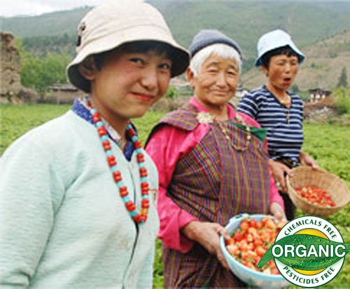 entire country goes organic