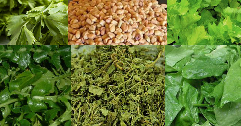 Fenugreek Substitutes