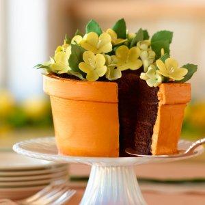 flower_pot_cake.jpg