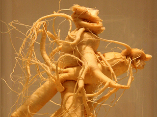 Ginseng is a natural supplement