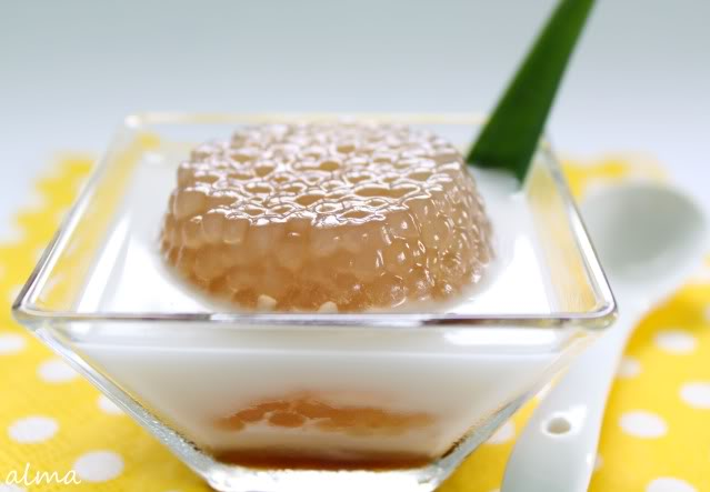 Palm sugar syrup dessert