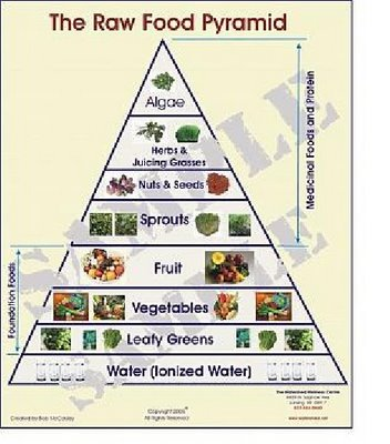 Raw food diet plan