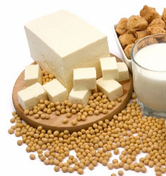 the answer to which is a better protein - soy or whey?