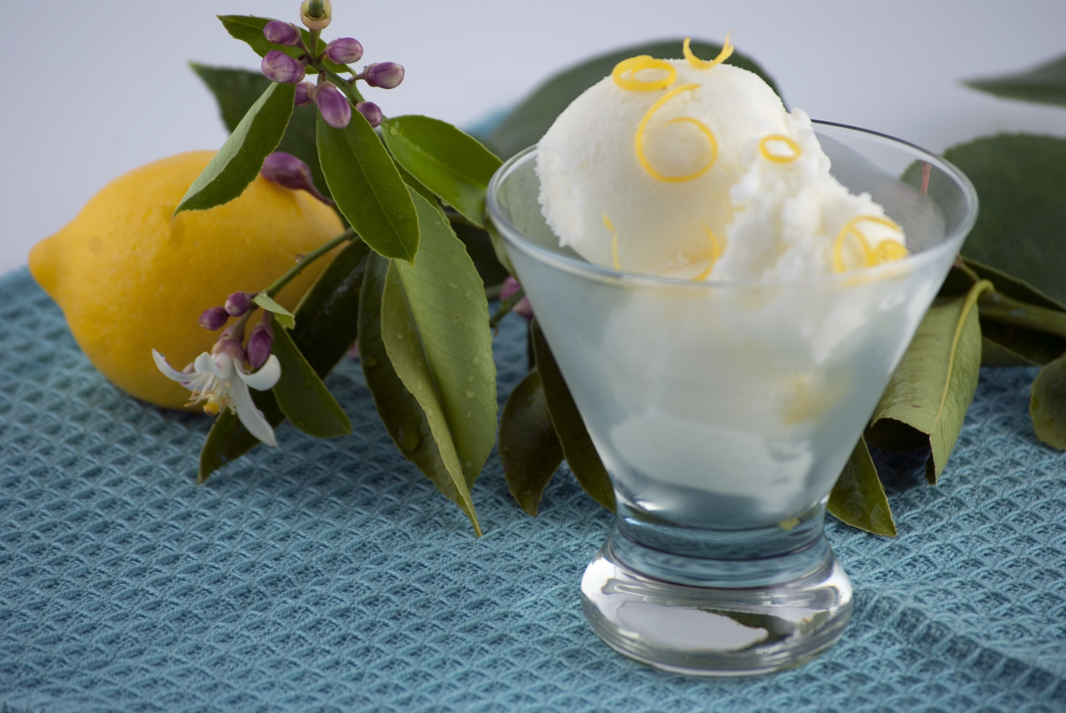 Lemon Kefir Sherbet picture
