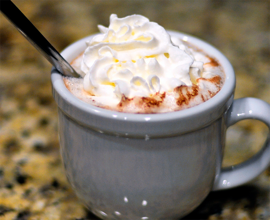 Microwave Hot Chocolate picture