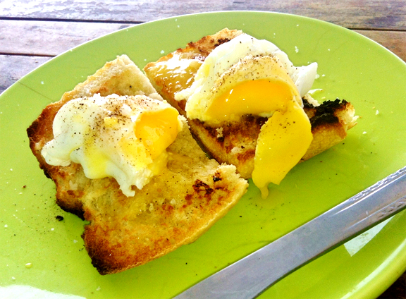 Steamed Eggs On Toast picture