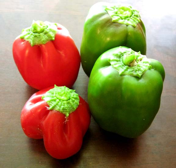 Red And Green Peppers In Olive Oil, Garlic, And Parsley picture