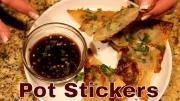 Wild Game Pot Stickers 1019975 By Lindaspantry