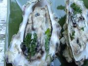 Baked Oyster Recipe And How To Shuck An Oyster