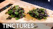 How To Make A Tincture Chocolate Mint 1016657 By Commonmancocktails