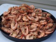 Boiled Shrimp