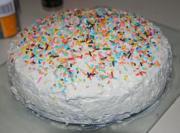 Small Plain Cakes