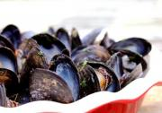 Cold Mussel