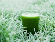Kale Green Shake