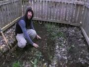 Prepping Your Garden