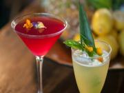 Cultured Cocktails