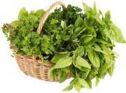 Top 5 organic herbs