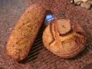 Sicilian No Knead Bread Pt 1