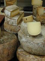 Cheese bought in bulk can be kept fresh for long