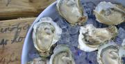 Oyster cook-off in Florida