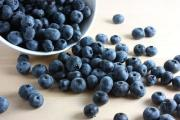 Wild blueberries can be a part of the forest-to-table, 'Eat Local' Movement