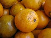 The humble orange peel has more uses than meets the eye