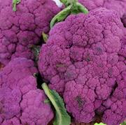 Cauliflower : Ulcerative Colitis foods to avoid