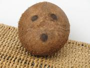 The three eyes of the coconut makes opening the fruit without spilling an easier task.