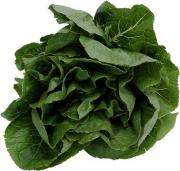 Using fresh spinach in various recipes