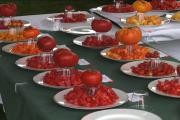 Celebrity Gary Ibsen at the Carmel Tomato Fest 2007 -Part 1
