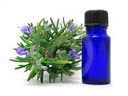 Tips on how to preserve rosemary in oil