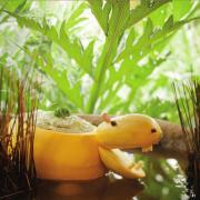 Hippo Dip