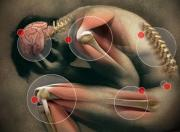 Herbal remedies for pain management