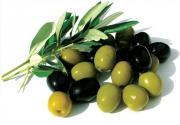 Olive during pregnancy.