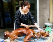 Dog meat industry in China is working cruelly.