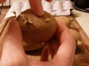 How To Grow Chitting Potatoes