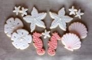 cookies with luster dust