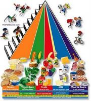 Teenagers food pyramid