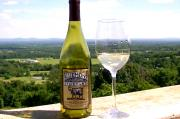 Views from the Vineyard: Bluemont Vineyard