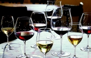 Top 10 Wines Introduced in 2010