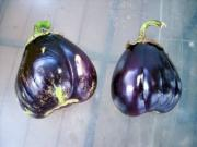 Tips to identify rotten eggplant