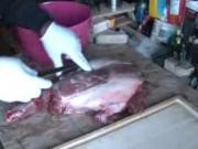 How To Butcher Your Deer's Hind Leg