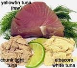 Nervous system disorders are the common side effects of tuna