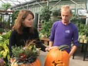 Pumpkin Designing Tips