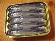 Fillet fresh sardines