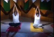 Yoga - Parvatasan