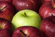 An Apple a day-keeps osteoporosis at bay.