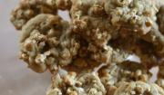 Fourth Of July Pop Corn Cookies