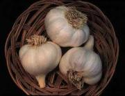 Banishing garlic breath with other foods