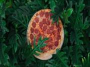 'Pizza In The Wild' Creates Art With Food